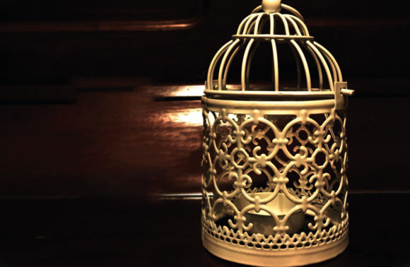 L'uccellino d'oro